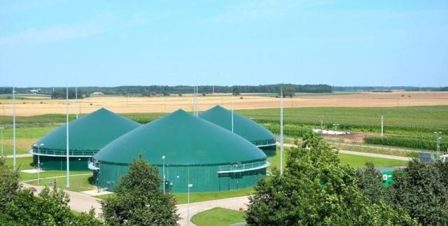 Według mieszkańców Gostchorza, którzy rozeznali się w temacie, biogazownie w innych miejscowościach są bardzo uciążliwe dla lokalnej społeczności.
