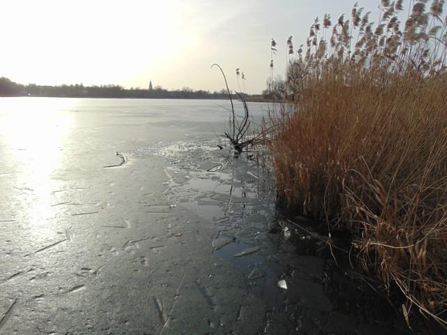 Pod chłopcem załamał się lód. Musieli interweniować międzychodzcy strażacy (24.02.2021).