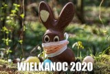 Wielkanoc w dobie koronawirusa. Te MEMY nieco rozładują napięcie. Uśmiechnij się! Memy świąteczne poprawią ci humor [13.04.2020]