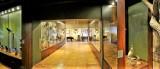 Można  już zwiedzać wystawy w Muzeum Ziemi Chełmskiej. Zobacz zdjęcia