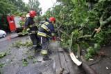 Silny wiatr w woj. śląskim. Setki powalonych drzew, uszkodzone dachy i ludzie bez prądu