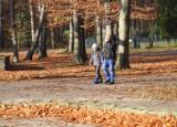 Gliwice: Piękna jesień w Parku Kultury i Wypoczynku. Zobaczcie ZDJĘCIA