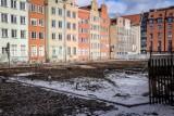 Wycięte drzewa przy Długim Targu w Gdańsku. W planach budowa kompleksu hotelowego