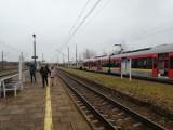 Pierwsze pociągi ŁKA pojechały z Drzewicy do Tomaszowa i Łodzi ZDJĘCIA