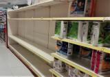 Sprawdzą ceny żywności i produktów higienicznych. Inspektorzy skontrolują, czy sprzedawcy nie zarabiają na strachu klientów