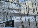 Zachwycająca Dolina Trzech Stawów w zimowej odsłonie. Jeden z najpopularniejszych parków w Katowicach wygląda bajecznie
