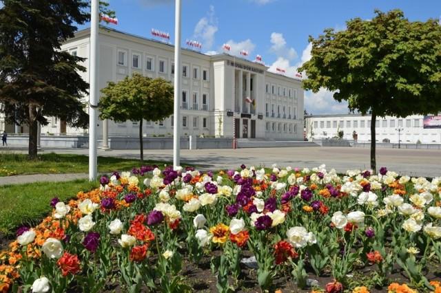 Plac Piłsudskiego przed Miejskim Domem Kultury będzie bardziej zielony,  zmodernizowany za norweskie pieniądze