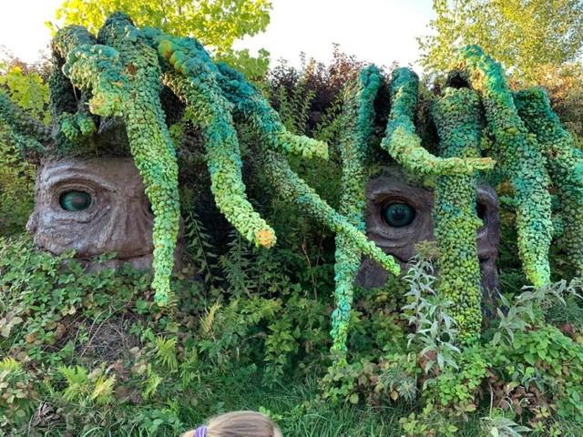 Magiczne Ogrody w Trzciankach Park edukacyjno-rekreacyjny dla dzieci, który zabiera ich w podróż do świata baśni. Na miejscu staniemy twarzą w twarz z uroczymi Mordolami, zatańczymy z wróżkami i zobaczymy rycerzy.  Trzcianki znajdują się w powiecie puławskim.
