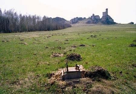 Spichlerz pod zamkiem mógł się stać dodatkową atrakcją Olsztyna.ZDJĘCIE: JACENTY DĘDEK
