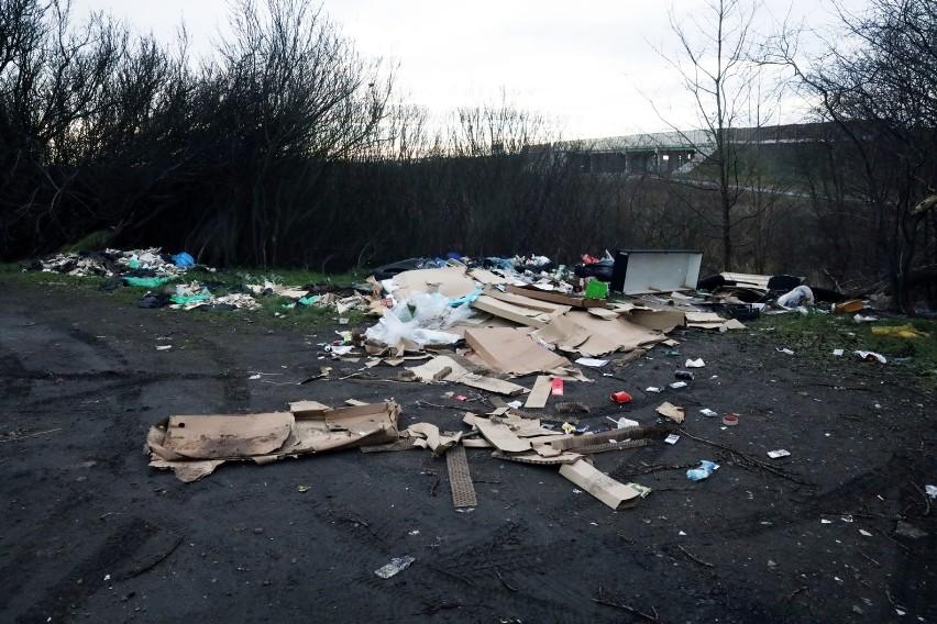 Kolejne dzikie wysypisko śmieci w Legnicy