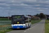 Zmiany w rozkładach jazdy Gryfa - od lipca przywrócone będą m.in. kursy niedzielne na trasie Sierakowice-Kartuzy