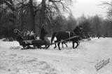 Jak kiedyś wyglądały ferie zimowe w Lublinie? Wyścigi sanek i kulig w Parku Saskim. Zobacz zdjęcia!