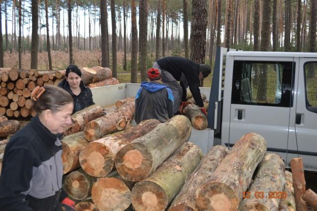Spółdzielnia socjalna działa od kilku miesięcy w gminie Dąbie.