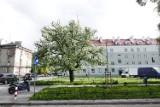 Zmiany drogowe na Mokotowie? Oddolne konsultacje i protesty dotyczące Puławskiej