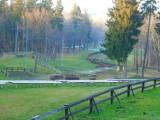 Kiedy byliście w parku w Szczawnie-Zdroju? Niedzielny spacer pomimo wiejącego coraz silniej wiatru może być udany