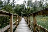 Niezwykła przyroda i spokój. Poleski Park Narodowy to fantastyczne  miejsce na weekendowy wypoczynek. Zobacz zdjęcia
