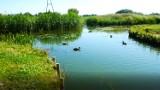 Skrzyżowanie rzek w Wągrowcu. Niezwykła atrakcja, którą stworzył człowiek