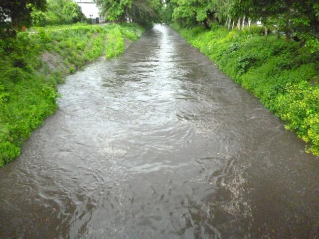 Rzeka Jasień