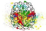 Trening mózgu, czyli jak sprawić, by nasz umysł był ostry jak brzytwa?