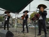 Meksykańskie rytmy rozbrzmiały na Rynku w Kartuzach