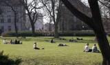 Pogoda Poznań i Wielkopolska: Przed nami ciepły tydzień. Sprawdź prognozę na najbliższe dni [23.04-26.04.2019]