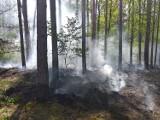 Nadleśnictwo Lubsko, straż pożarna, policja. Spotkania w sprawie podpaleń lasów w okolicy Jasienia