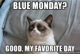 Blue Monday 2020 MEMY. Śmieszne obrazki na najbardziej depresyjny dzień w roku