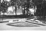Park Zdrojowy w Jastrzębiu przed wojną? Tak pięknie się prezentował! Zobacz te unikalne ZDJĘCIA