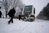 Pojedzie pociąg z Wągrowca do Rogoźna? Pomysł rewitalizacji linii przeszedł pierwszy etap programu Ministra Infrastruktury