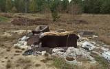 Lasy w Żaganiu pełne śmieci! Zamiast do lasu, wywieź odpady do PSZOK-ów!