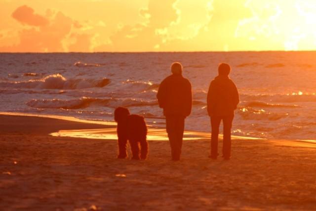 Wczasy w Świnoujściu (miejsce 1) to bardzo dobry pomysł. Na turystów wypoczywających w Świnoujściu czeka niemal 10 km plaż, miejscami szerokich nawet na 130 m.  Świnoujskie kąpieliska są płytkie, a przez to ciepłe. Należą też do najbezpieczniejszych i najlepiej przygotowanych na przyjęcie turystów.   Świnoujście prócz ciepłych kąpielisk oferuje też mnóstwo innych atrakcji.   Warto obejrzeć między innymi:  najwyższą na polskim wybrzeżu latarnię (68 m), twierdzę morską, kompleks bunkrów dawnej baterii nadbrzeżnej Strandbatterie,  falochrony i muzea.    Zobacz też: Wakacje w Polsce - Gdzie na wypoczynek?