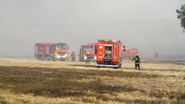 Pożar pola między Siedliskiem i Runowem