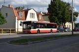Wakacyjny autobus 607 z Pruszcza do Sobieszewa [TRASA, ROZKŁAD] będzie jeździł od piątku 26.06