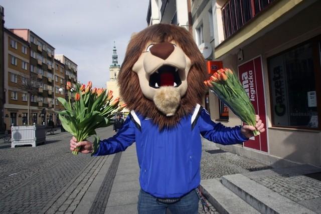 Miedziany Lew rozdawał tulipany paniom z okazji Dnia Kobiet w Legnicy