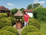 Piękne ogrody działkowe w Międzyrzeczu. Wśród tych działeczek bryluje ogród Pana Artura. Według sąsiadów, z niepowtarzalnym klimatem
