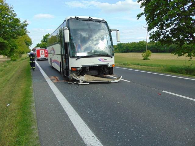 Zderzenie autobusu i dwóch samochodów osobowych na drodze krajowej nr 24 na wysokości Pólka