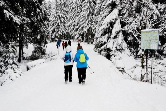 Jakuszyce są przepiękne! Wszyscy czekają, kiedy pojawi się tutaj zimowy puch. Ręce zacierają narciarze biegowi, piechurzy i rodziny z dziećmi. Wszyscy chcą nacieszyć się pięknymi krajobrazami i ulubionymi aktywnościami.