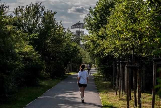 Od kilku dni możemy cieszyć się piękną pogodą. Z tego powodu wiele osób decyduje się na spędzanie wolnego czasu na świeżym powietrzu. Częstym wyborem stają się okolice Warty. Przekonujemy jednak, że Poznań i cała Wielkopolska oferują wiele wspaniałych miejsc, gdzie można spędzić czas na świeżym powietrzu - bez narażania się na towarzystwo tłumów. Prezentujemy 15 miejsc w Poznaniu i okolicach, gdzie można spędzić wolny czas na świeżym powietrzu.   Przejdź dalej i sprawdź, które miejsca polecamy ---->