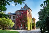 Gołuchów. Jesienne barwy zaczęły otaczać nasz zamek w Gołuchowie i park arboretum. Te zdjęcia trzeba koniecznie zobaczyć!