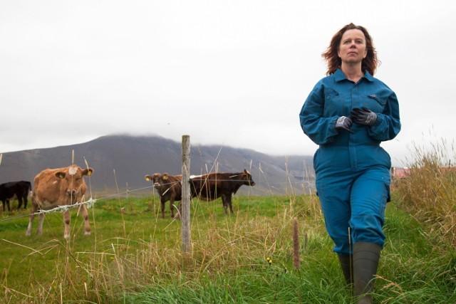 """""""Daleko od Reykjavíku"""" Grímura Hákonarsona w północną melancholię nieoczekiwanie wplata komizm, a przemianę bohaterki subtelnie łączy ze zmianami w jej otoczeniu."""