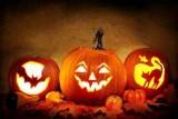 Areszt za Halloween? Projektem ustawy zajmie się Sejm