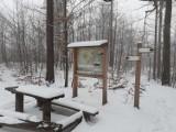 Wałbrzych: Śnieżna wycieczka w okolice góry Chełmiec