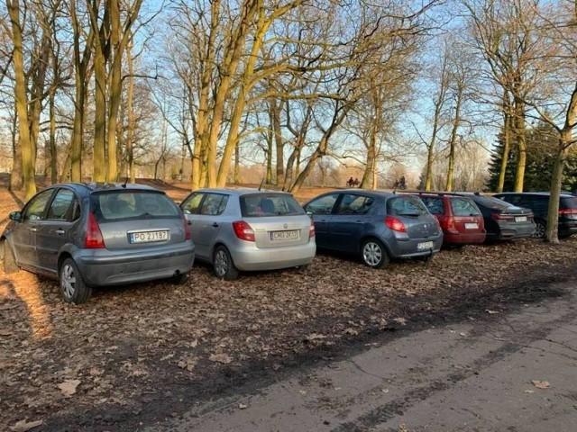 Jednym z najbardziej obleganych miejsc w niedzielę stała się  Cytadela, gdzie można było zobaczyć tłumy spacerowiczów. Niestety wielu z nich postanowiło zaparkować swoje samochody na trawnikach wokół parku, tym samym je rozjeżdżając.