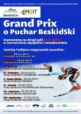 II Grand Prix o Puchar BeskiSki