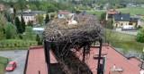 Bocian z Palowic stracił gniazdo. Pomagają strażacy z Rybnika! ZDJĘCIA