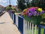 Mołdawianinowi tak spodobała się donica z kwiatami na moście w Międzyrzeczu, że postanowił ją ukraść