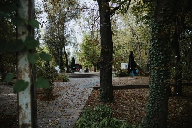 Krakowskie Centrum Muzyki powstanie na Cichym Kąciku, tam, gdzie do zeszłego roku działał Bezogródek, czyli miejsce z foodtruckami