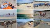 Plażowicze na Pomorzu w obiektywie Google Street View! Urlopowicze przyłapani na wypoczynku nad Bałtykiem