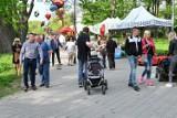 Spacerowicze w Parku Miejskim w Kielcach. Ludzie tłumnie wyszli z domów [ZDJĘCIA]