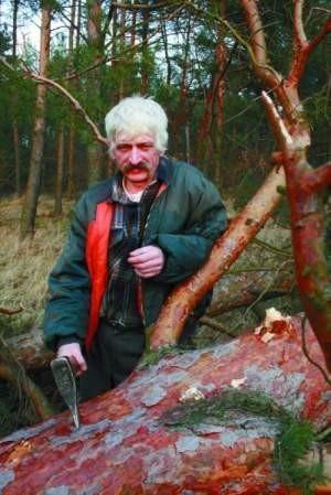 Ryszard Gruchawka powrócił z Irlandii i znowu jest drwalem. fot. janusz pawul